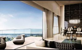 newlaunch.sg skies miltonia view