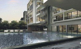 newlaunch.sg the cristallo pool