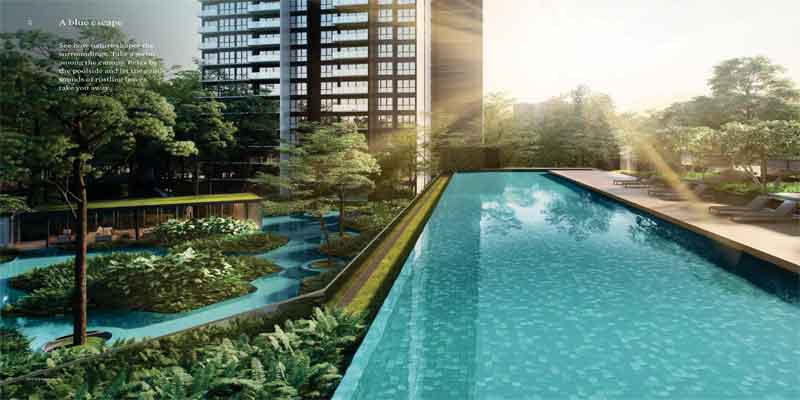newlaunch.sg clement canopy lap pool