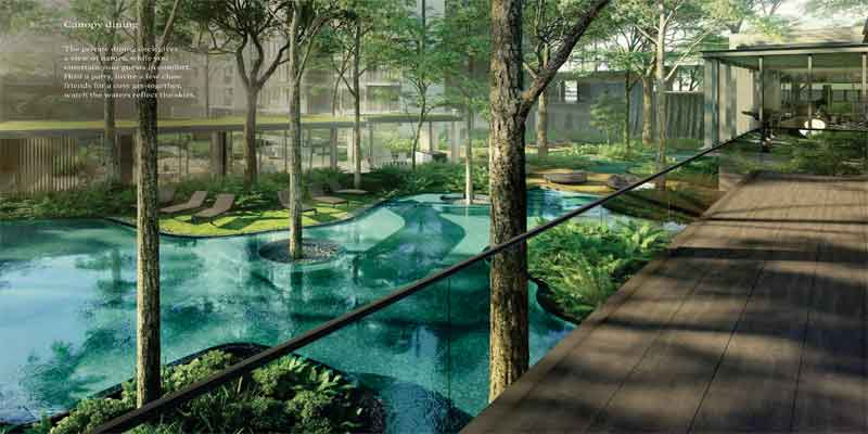 newlaunch.sg clement canopy pool 3