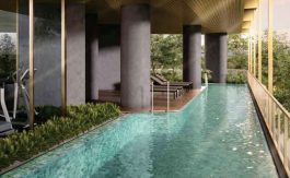 newlaunch.sg 1 draycott pool